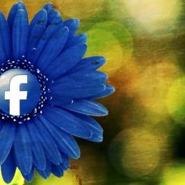 Facebook per gli scrittori: risorsa irrinunciabile o trappola mortale?