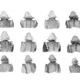 Arte pura e arte applicata: le copertine di Riccardo Vecchio